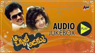 Aa Okkati Adakku Telugu Movie Songs