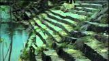 Poovaram Video Song |  Aan Paavam